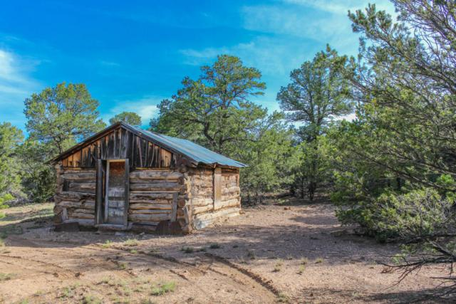Off Highway 217, Tijeras, NM 87059 (MLS #897971) :: Campbell & Campbell Real Estate Services