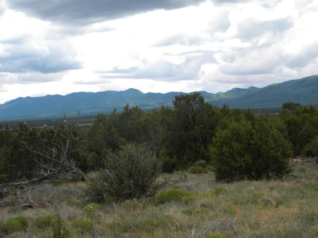 Oakwood, Tajique, NM 87016 (MLS #897996) :: Campbell & Campbell Real Estate Services