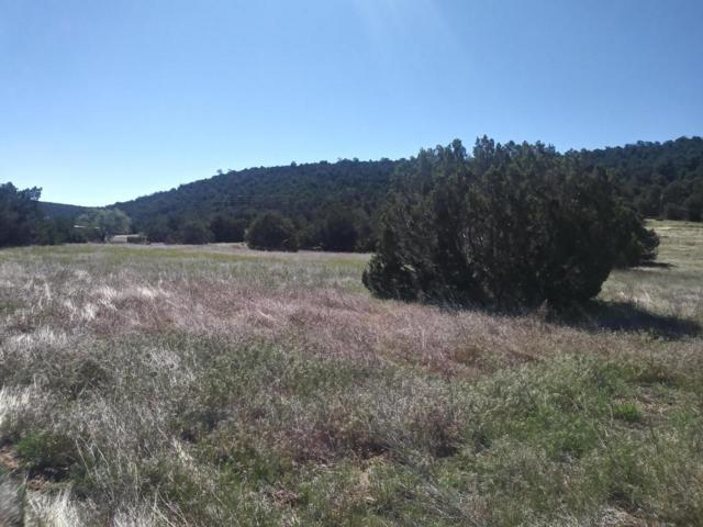 SW Vidalia Lot # 3 Road SW, Edgewood, NM 87015 (MLS #898009) :: Campbell & Campbell Real Estate Services
