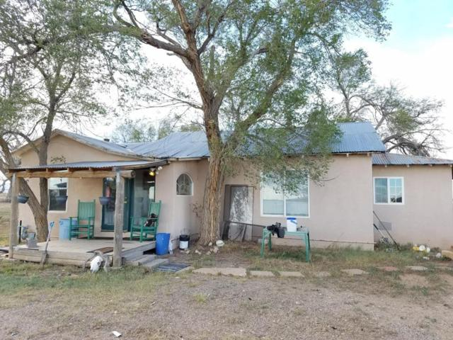 251 Riley Road, Estancia, NM 87016 (MLS #898011) :: Campbell & Campbell Real Estate Services