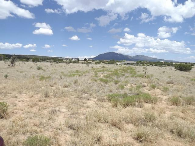 31 Indian Sky Lane, Edgewood, NM 87015 (MLS #898036) :: Campbell & Campbell Real Estate Services