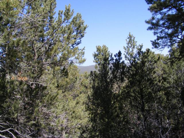8 Mulberry Loop, Cedar Crest, NM 87008 (MLS #898068) :: Campbell & Campbell Real Estate Services