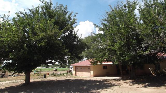 202 NE El Cerro Loop NE, Los Lunas, NM 87031 (MLS #898086) :: Campbell & Campbell Real Estate Services
