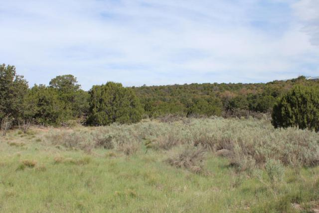 44 Las Colinas Road, Edgewood, NM 87015 (MLS #898087) :: Campbell & Campbell Real Estate Services