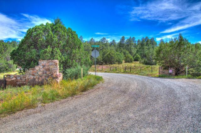 62 Cole Springs Road, Cedar Crest, NM 87008 (MLS #898095) :: Campbell & Campbell Real Estate Services