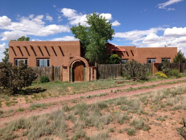 49 Vineyard Lane, Mountainair, NM 87036 (MLS #898168) :: Campbell & Campbell Real Estate Services