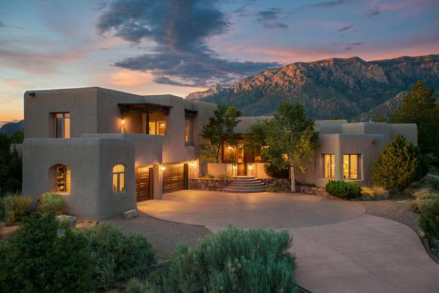 13423 Desert Zinnia Court NE, Albuquerque, NM 87111 (MLS #898265) :: Your Casa Team