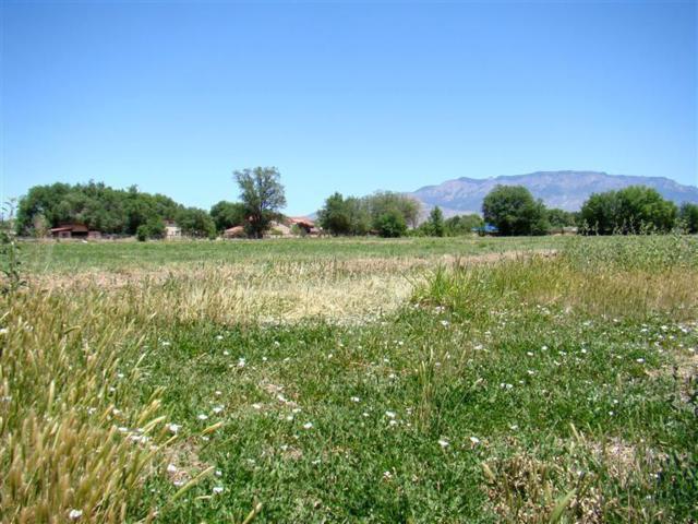 585 Alma Encantada NW, Los Ranchos, NM 87107 (MLS #898505) :: Rickert Property Group