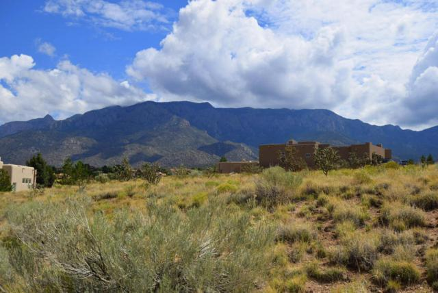 6804 Pino Arroyo Court NE, Albuquerque, NM 87111 (MLS #898768) :: Rickert Property Group
