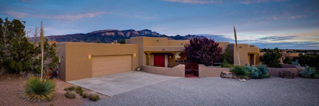 8 Desert Mountain Road, Placitas, NM 87043 (MLS #899478) :: Your Casa Team