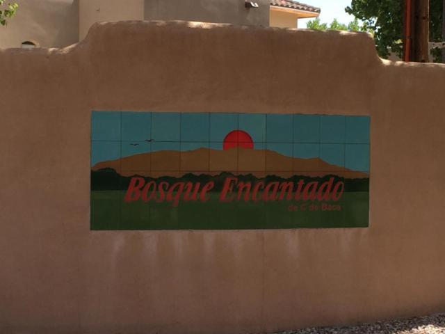 305 Plaza Consuelo, Bernalillo, NM 87004 (MLS #899539) :: Rickert Property Group