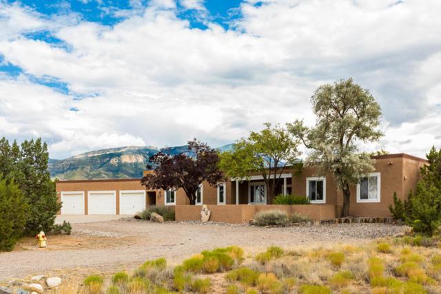 46 Placitas Trails Road, Placitas, NM 87043 (MLS #899593) :: Your Casa Team