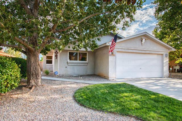916 Tiffin Meadows Drive NE, Rio Rancho, NM 87144 (MLS #899721) :: Your Casa Team