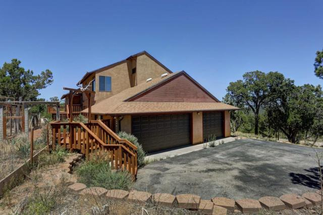 8 High Country Drive, Cedar Crest, NM 87008 (MLS #899724) :: Campbell & Campbell Real Estate Services