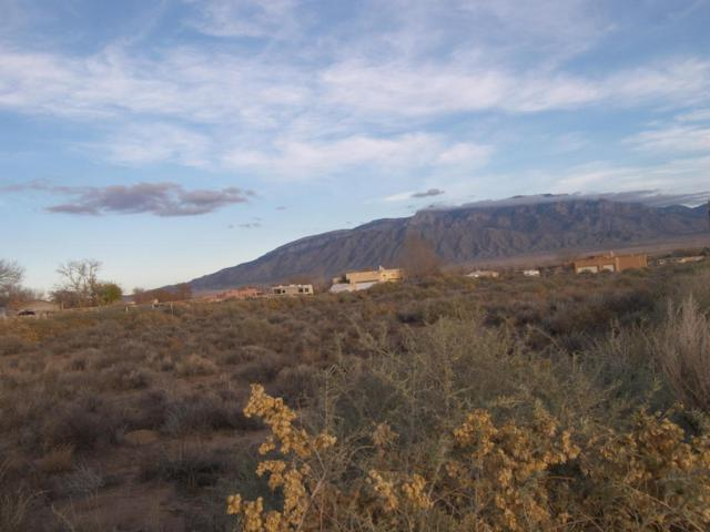 565 Gutierrez Road, Corrales, NM 87048 (MLS #899772) :: Rickert Property Group