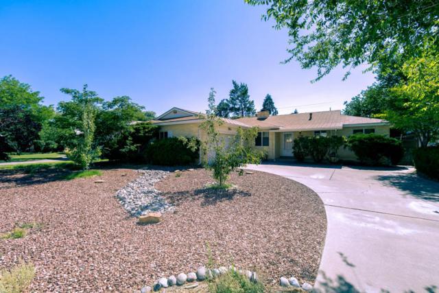 1501 Cardenas Drive NE, Albuquerque, NM 87110 (MLS #899812) :: Your Casa Team