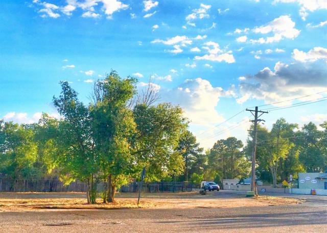 8830 4th Street NW, Los Ranchos, NM 87114 (MLS #899829) :: Rickert Property Group