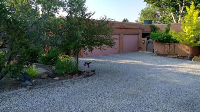437 Alamos Road, Corrales, NM 87048 (MLS #899858) :: Rickert Property Group