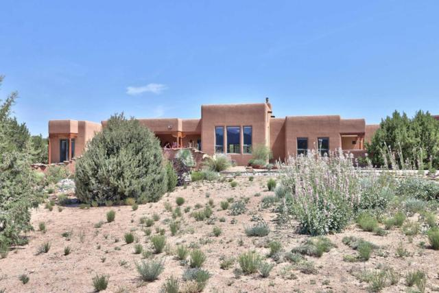 162 Windmill Trail, Placitas, NM 87043 (MLS #899892) :: Rickert Property Group