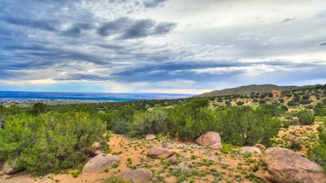 Lot 68 NE, Albuquerque, NM 87122 (MLS #900371) :: Your Casa Team