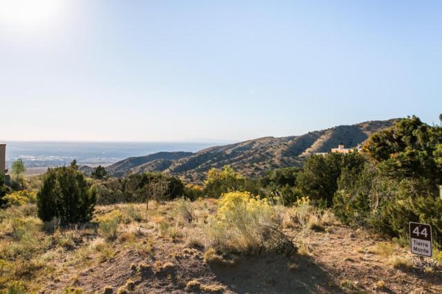 44 Tierra Monte Drive NE, Albuquerque, NM 87122 (MLS #900381) :: Your Casa Team