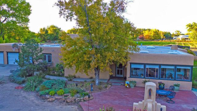 914 N Macario Lane NE, Los Lunas, NM 87031 (MLS #900710) :: Campbell & Campbell Real Estate Services