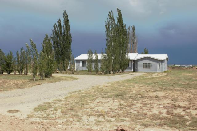 43 Belgian Street, Moriarty, NM 87035 (MLS #900719) :: Campbell & Campbell Real Estate Services