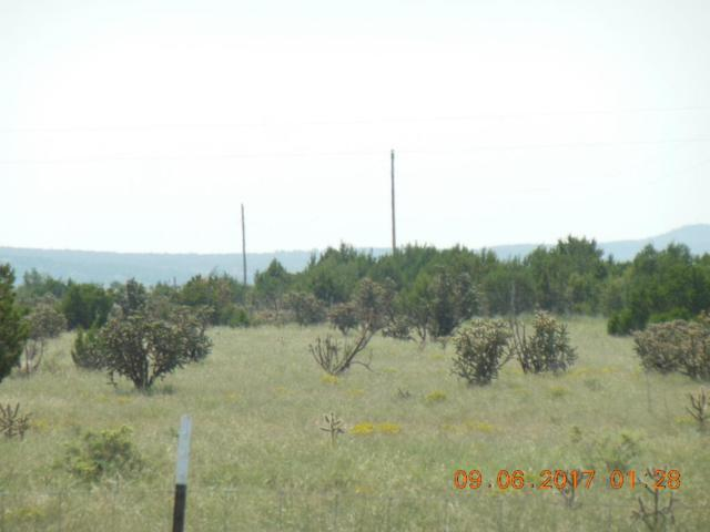 00 Cedar Lane Drive, Moriarty, NM 87035 (MLS #901182) :: Campbell & Campbell Real Estate Services