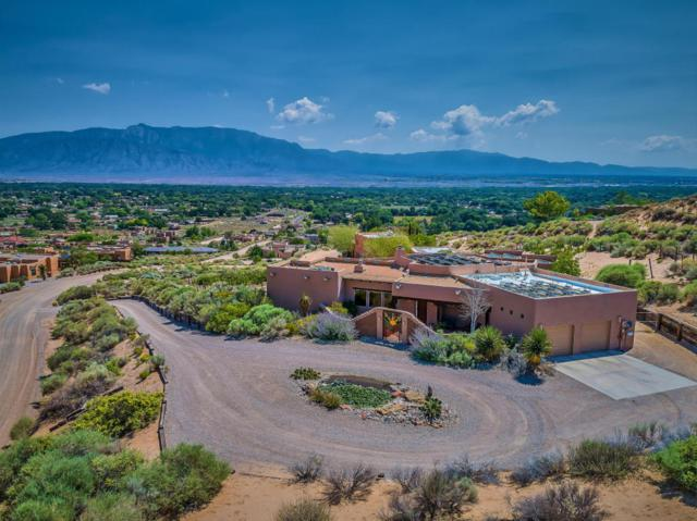 311 Sereno Road, Corrales, NM 87048 (MLS #901264) :: Campbell & Campbell Real Estate Services