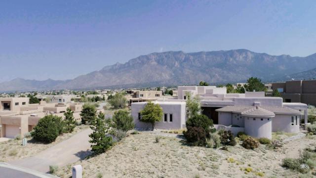 6020 Paper Flower Place NE, Albuquerque, NM 87111 (MLS #901282) :: Rickert Property Group