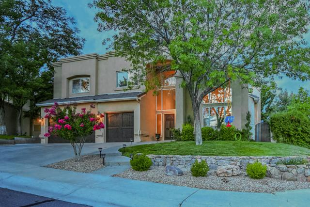 11333 Woodmar Lane NE, Albuquerque, NM 87111 (MLS #901299) :: Rickert Property Group