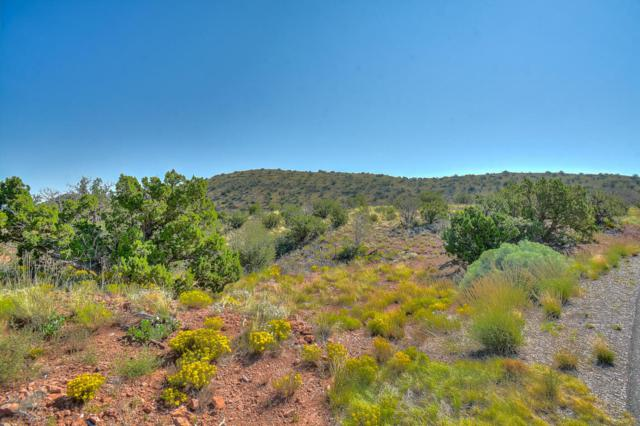 Lot 72 Star Meadow, Placitas, NM 87043 (MLS #901315) :: Campbell & Campbell Real Estate Services