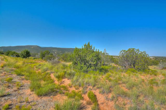Lot 82 Star Meadow, Placitas, NM 87043 (MLS #901321) :: Campbell & Campbell Real Estate Services