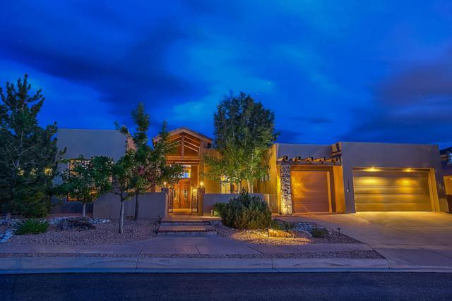 12908 Juniper Canyon Trail NE, Albuquerque, NM 87111 (MLS #901449) :: Your Casa Team
