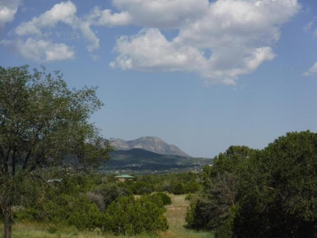46 Adobe Lane, Sandia Park, NM 87047 (MLS #901497) :: Campbell & Campbell Real Estate Services