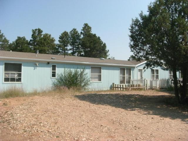 18 Mallard Drive, Tijeras, NM 87059 (MLS #901524) :: Campbell & Campbell Real Estate Services
