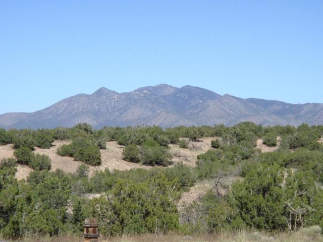 1 Sandstone Trail, Sandia Park, NM 87047 (MLS #901527) :: Campbell & Campbell Real Estate Services
