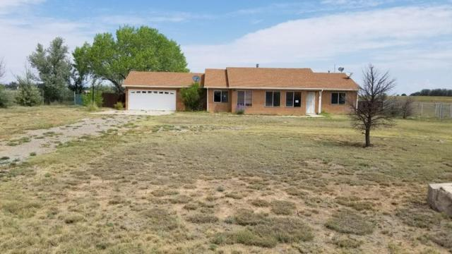 26 Tumbleweed Drive, Moriarty, NM 87035 (MLS #901639) :: Campbell & Campbell Real Estate Services