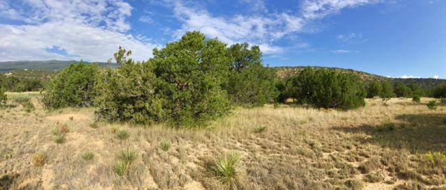 Shady Oak Circle, Tijeras, NM 87059 (MLS #901714) :: Your Casa Team