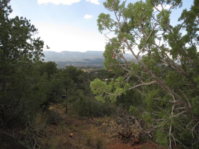 46 Los Suenos, Sandia Park, NM 87047 (MLS #901733) :: Campbell & Campbell Real Estate Services