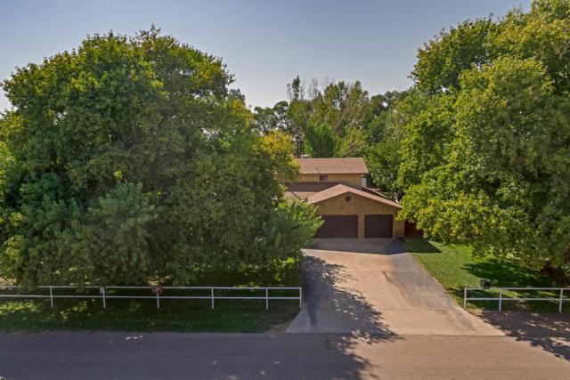 1215 Green Acres Lane, Bosque Farms, NM 87068 (MLS #901845) :: Rickert Property Group