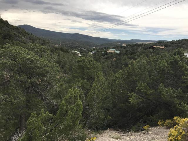 26 Eagle Trail, Tijeras, NM 87059 (MLS #901876) :: Your Casa Team