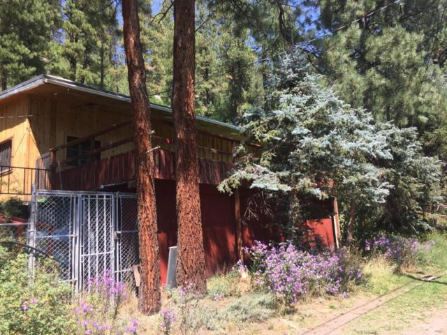 88 Argo Lane, Jemez Springs, NM 87025 (MLS #901976) :: Campbell & Campbell Real Estate Services