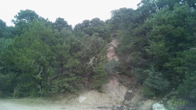 Lot 10 Block 2 Evergreen Hills NE, Albuquerque, NM 87122 (MLS #901978) :: Your Casa Team