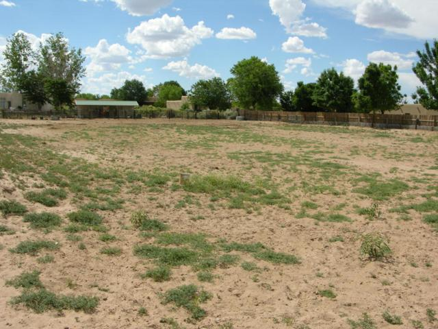 117 Doolittle, Corrales, NM 87048 (MLS #901990) :: Campbell & Campbell Real Estate Services