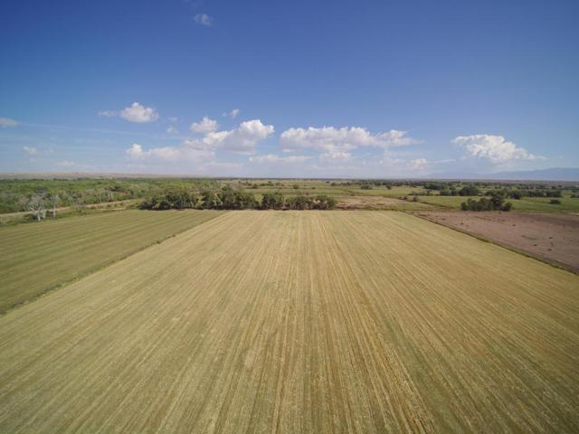 Zia Rd Farm, Veguita, NM 87062 (MLS #902010) :: Campbell & Campbell Real Estate Services