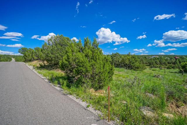 20 Hobart Road, Tijeras, NM 87059 (MLS #902053) :: Your Casa Team