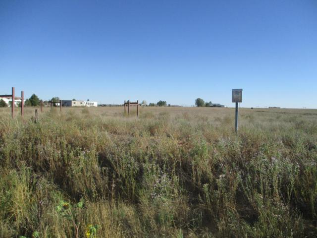 834 Dinkle Road, Edgewood, NM 87035 (MLS #902069) :: Campbell & Campbell Real Estate Services