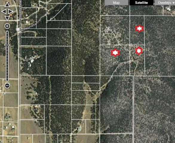 0 Nephets Lane, Edgewood, NM 87015 (MLS #902132) :: Campbell & Campbell Real Estate Services