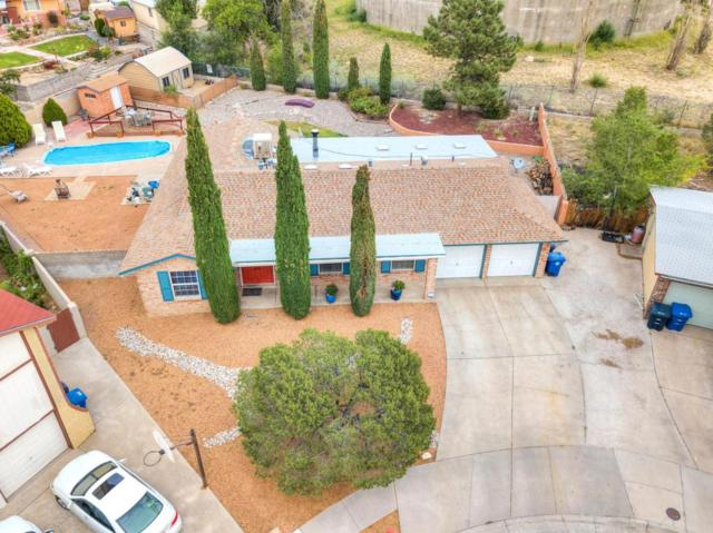 4709 Bali Court NE, Albuquerque, NM 87111 (MLS #902149) :: Campbell & Campbell Real Estate Services